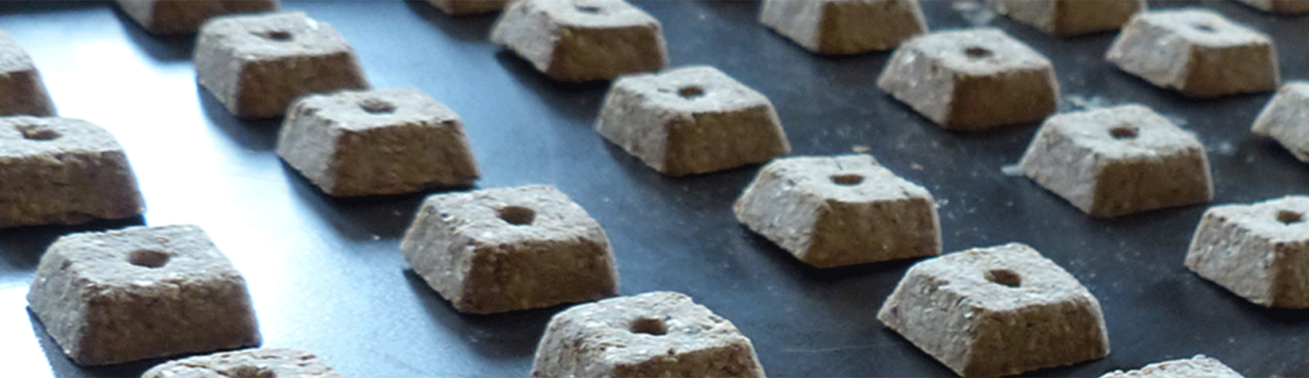 healthy hemp dog biscuits