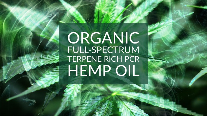 Organic full-spectrum terpene rich PCR hemp oil blog post photo
